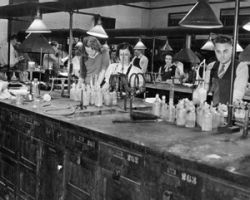 UC opened all its engineering programs to women students during World War II as part of the war effort. A chemical engineering lab is pictured.