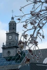 2007 Winter Scenes