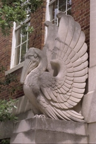 Stone birds at Dyer Hall
