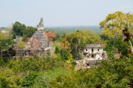 Ancient temples in the forest of Tikal in Guatemala.