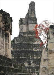 View of Temple 1 from Central Acropolis, residence of Tikal rulers.