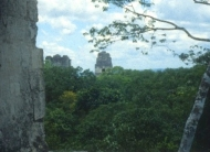 Tikal Temples 1 & 2 from on top of Temple 4.