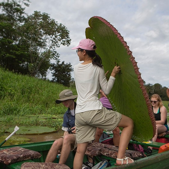 A student holds a giant lily pad, almost as tall as she is, while on a boat.