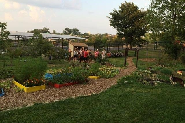 Students help out at UC's organic garden.