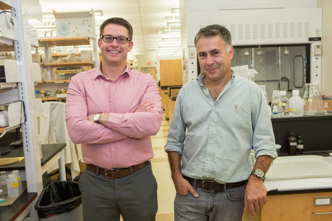 UC biologists Joshua Benoit, left, and Michal Polak will collaborate on a new study on fruit flies over the next year.