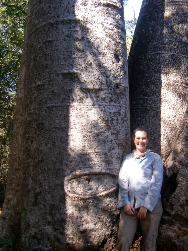 UC professor Brooke Crowley stands in front of an iconic Madagascar baobab tree. (Brooke Crowley)