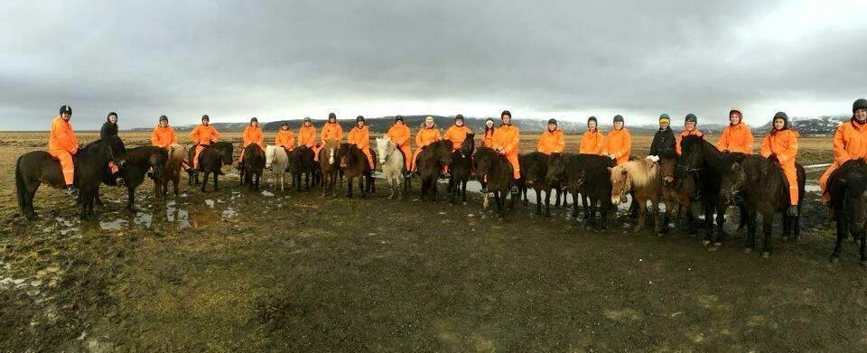 UC students sit side-by-side atop Icelandic horses.photo/Kevin Grace