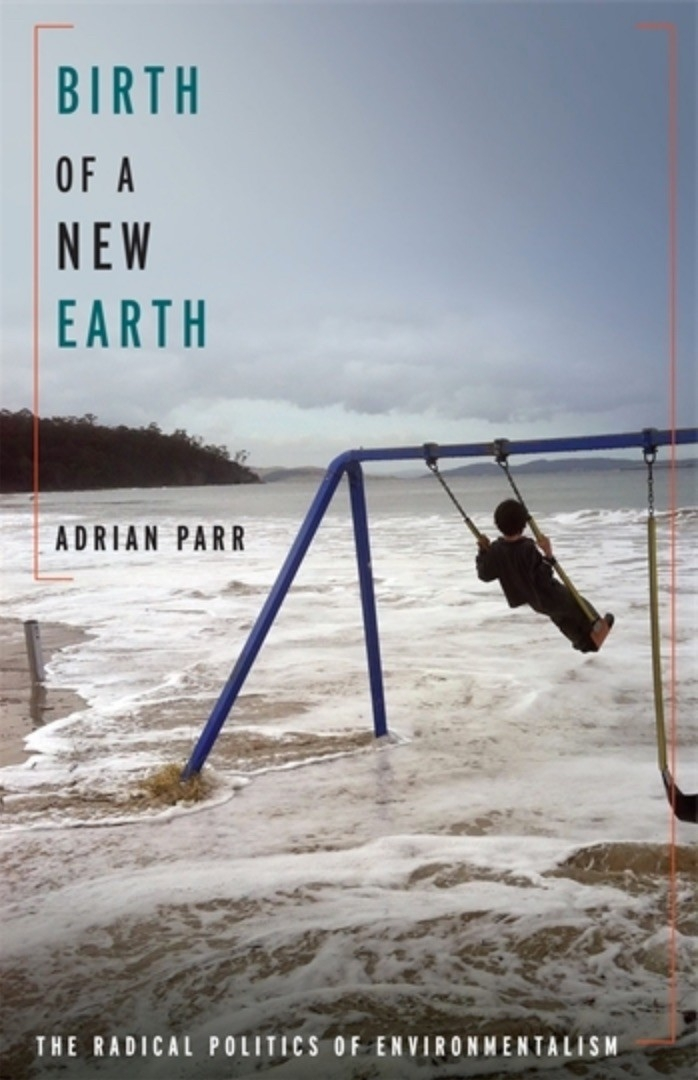 Cover of the book, Birth of a New Earth, showing a child swinging on a swingset anchored into the water's edge of an ocean.