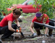 UC employees work in garden as part of UC Serves