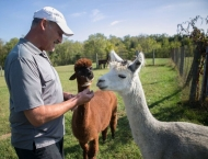 Greg Wahl in field with alpaca