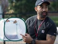 Professor with butterfly net