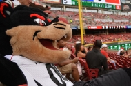 15 ways UC Is a baseball All-Star in honor of Cincinnati hosting the 2015 All-Star Game