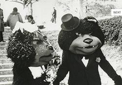 Mr. & Mrs. Bearcat