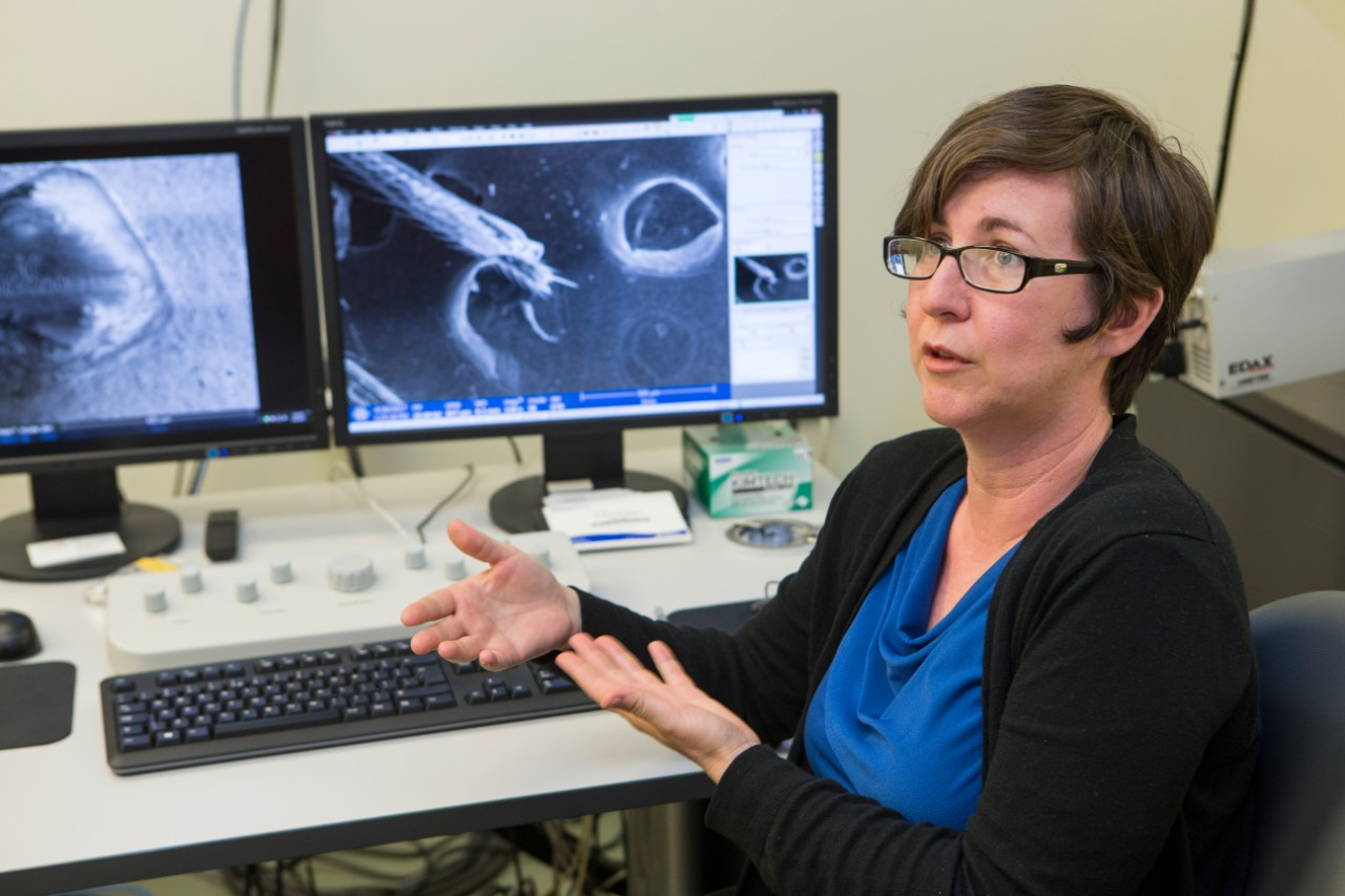 Melodie Fickenscher, director of UC's Advanced Materials Characterization Center, uses microscopy to help businesses solve production problems.