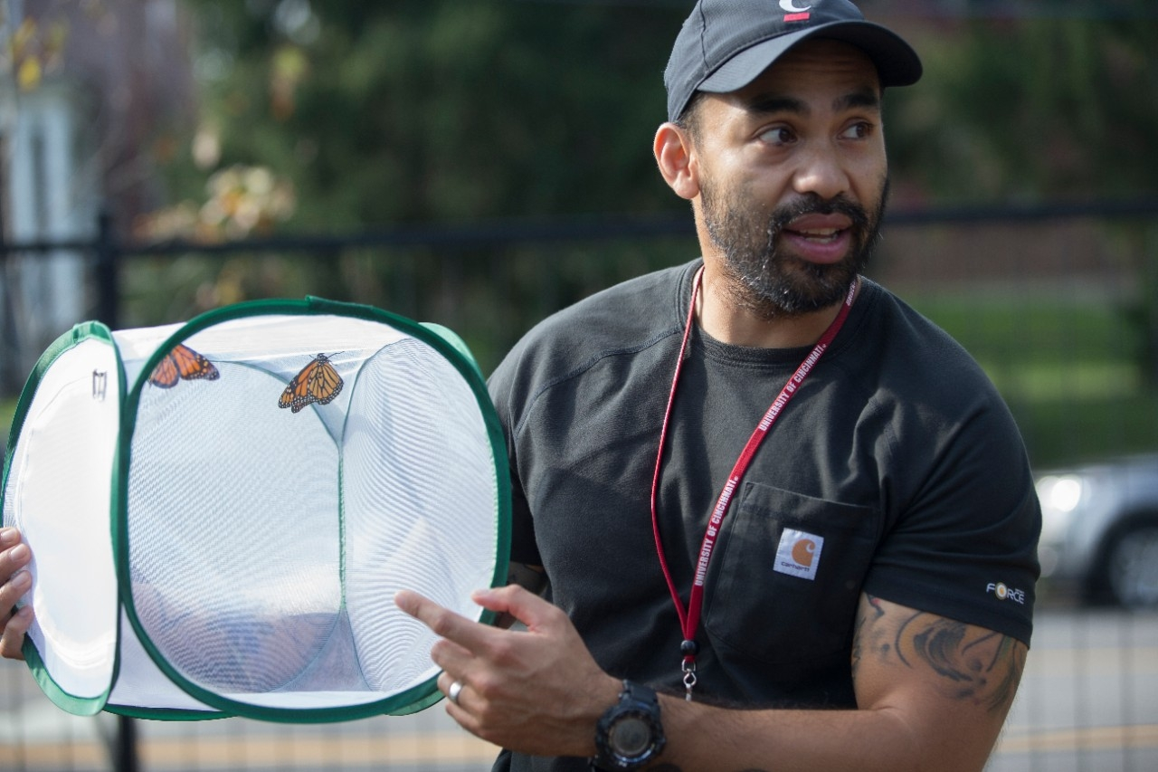 UC professor Patrick Guerra holds a carrier full of monarch butterflies. He is studying the epic, multi-generational migration of these colorful butterflies.