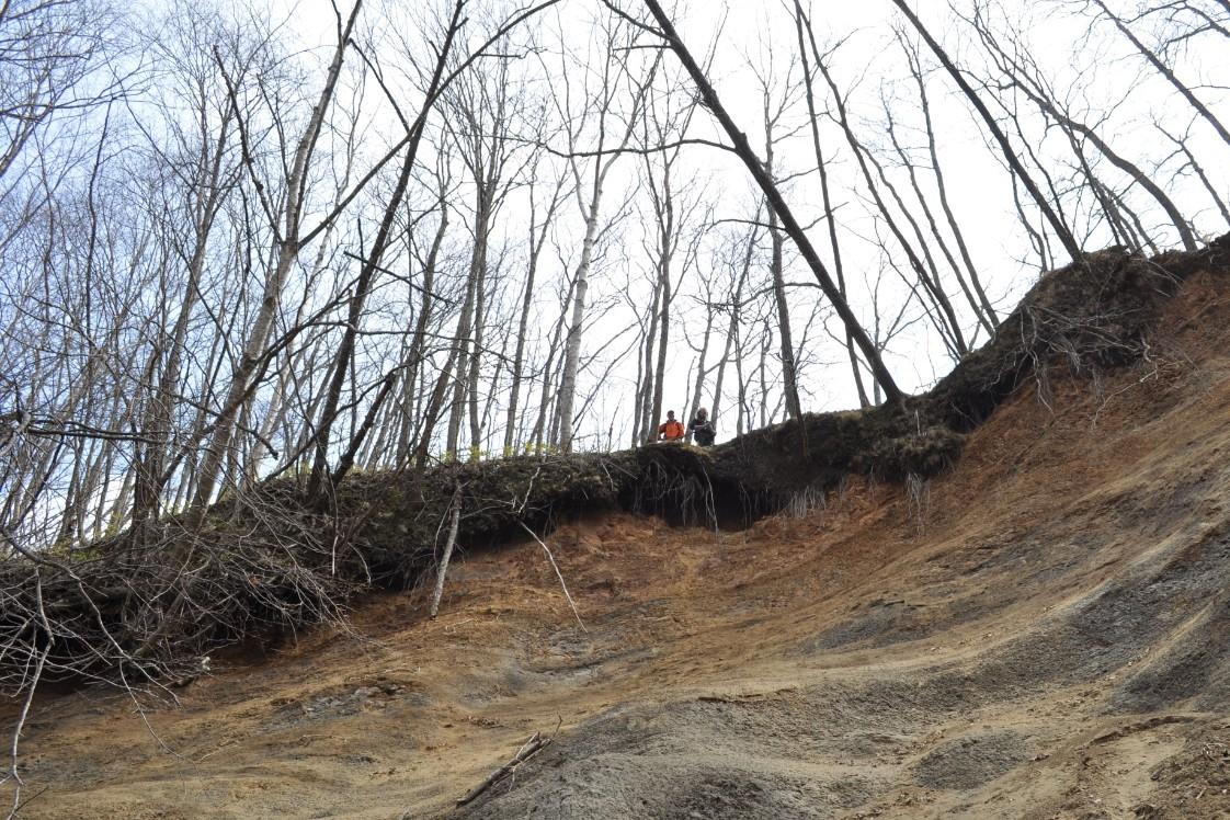 Marine rock strata, Hokkaido, Japan