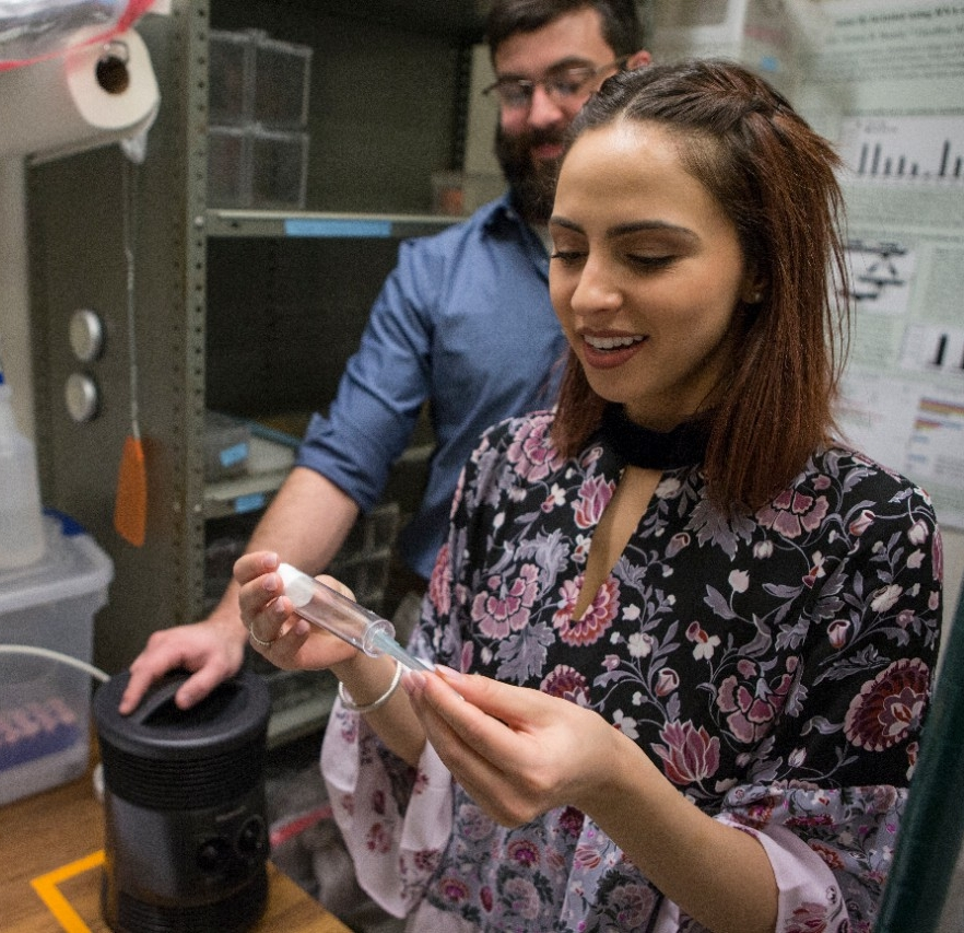 UC biology student Gabriela Nine prepares to feed mosquitoes in the lab.