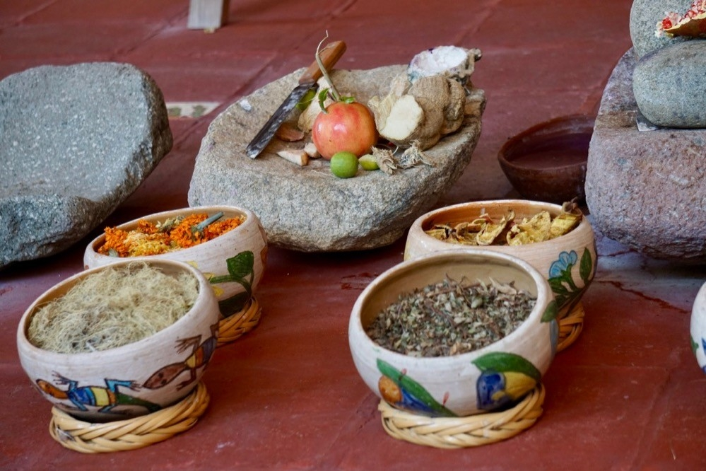 Bowls of plant and seeds used to make colored dyes in Oaxaca, Mexico.