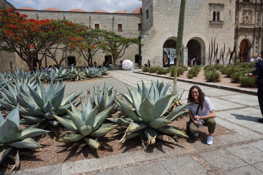 UC study abroad student sits among cactus in Oaxaca City, Mexico.