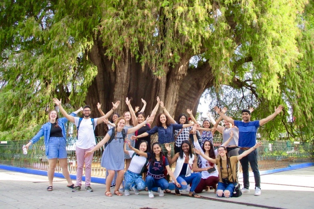 UC study abroad students stand in front of the largest wild tree in the world in Santa Maria del Tule near Oaxaca, Mexico.
