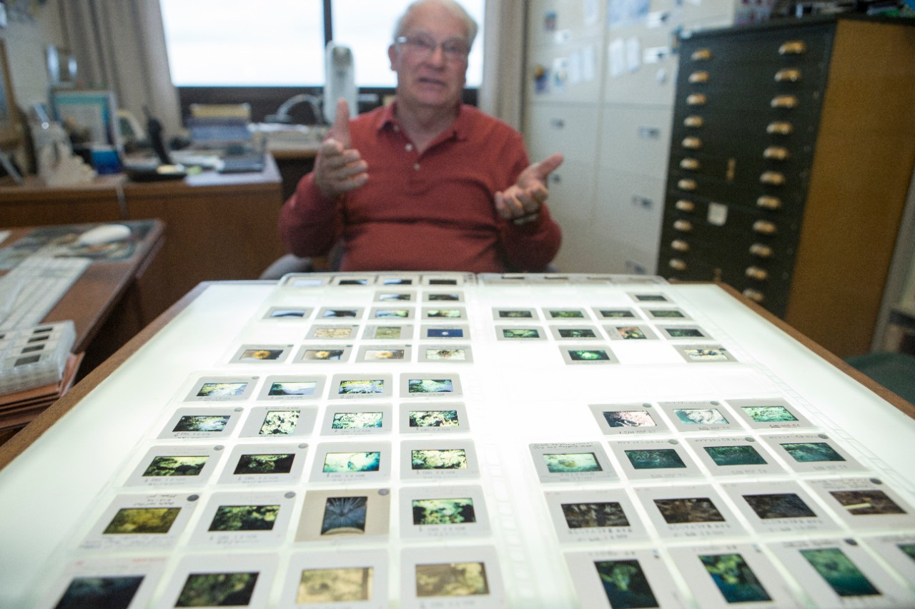 UC professor emeritus David Meyer is digitizing his collection of underwater photography to share with researchers and the public at Scholar@UC.