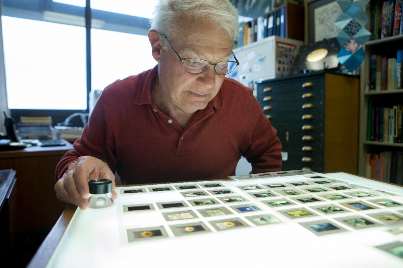 UC geology professor emeritus David Meyer looks at photographic slides on a lightbox. photo/Andrew Higley