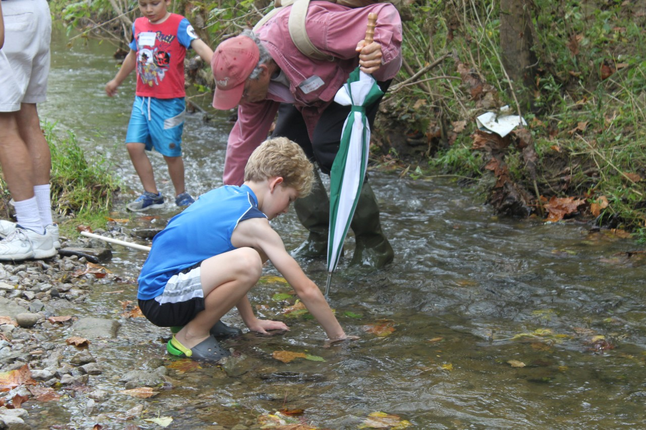 Looking for crayfish and salamanders.