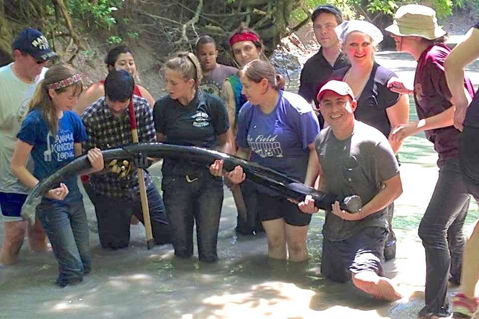 UC students unearth an ancient mastodon tusk from a creek bed in Big Bone Lick State Park.