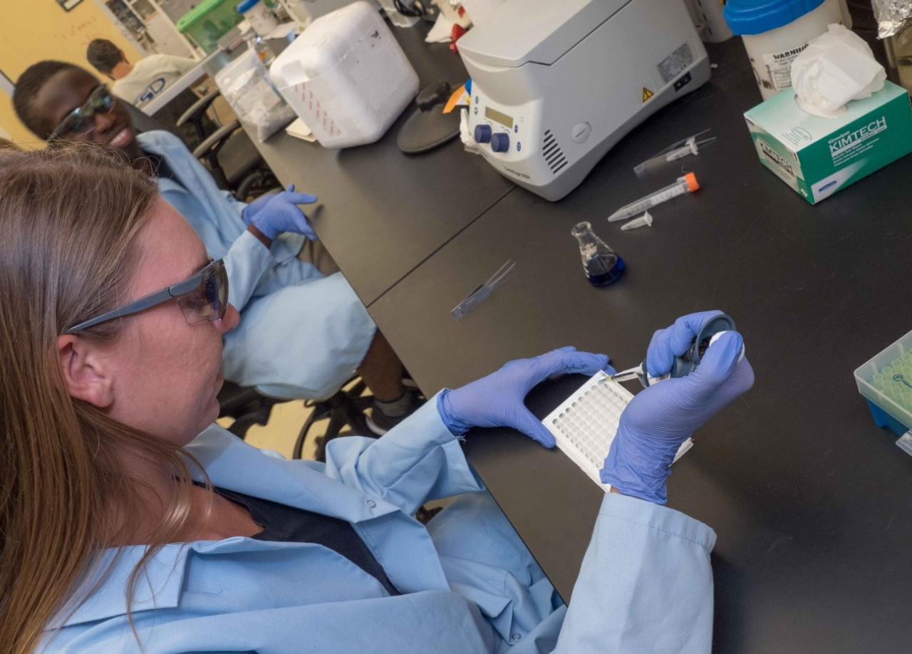 Student Alicia Fieler prepares a sample for testing in professor Joshua Benoit's biology lab.