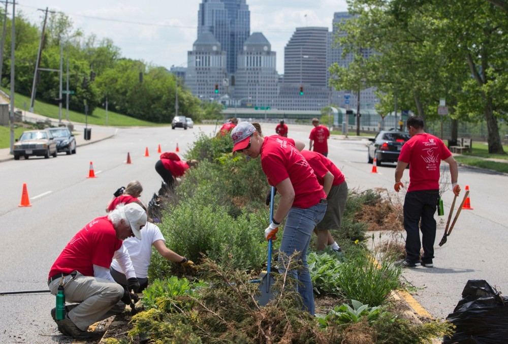 Men and women in red T-shirts dig weeds from a median along Gilbert Avenue.