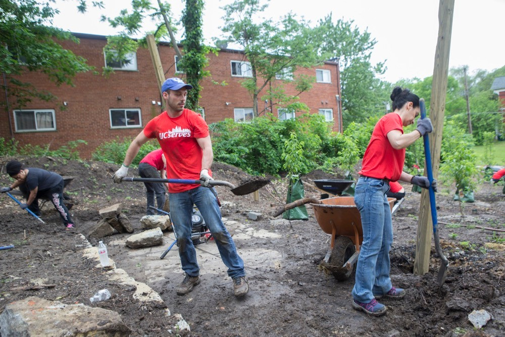 UC Serves volunteers stand with shovels and wheelbarrow while planting trees at an urban nature garden. photo/Joseph Fuqua II/UC Creative Services