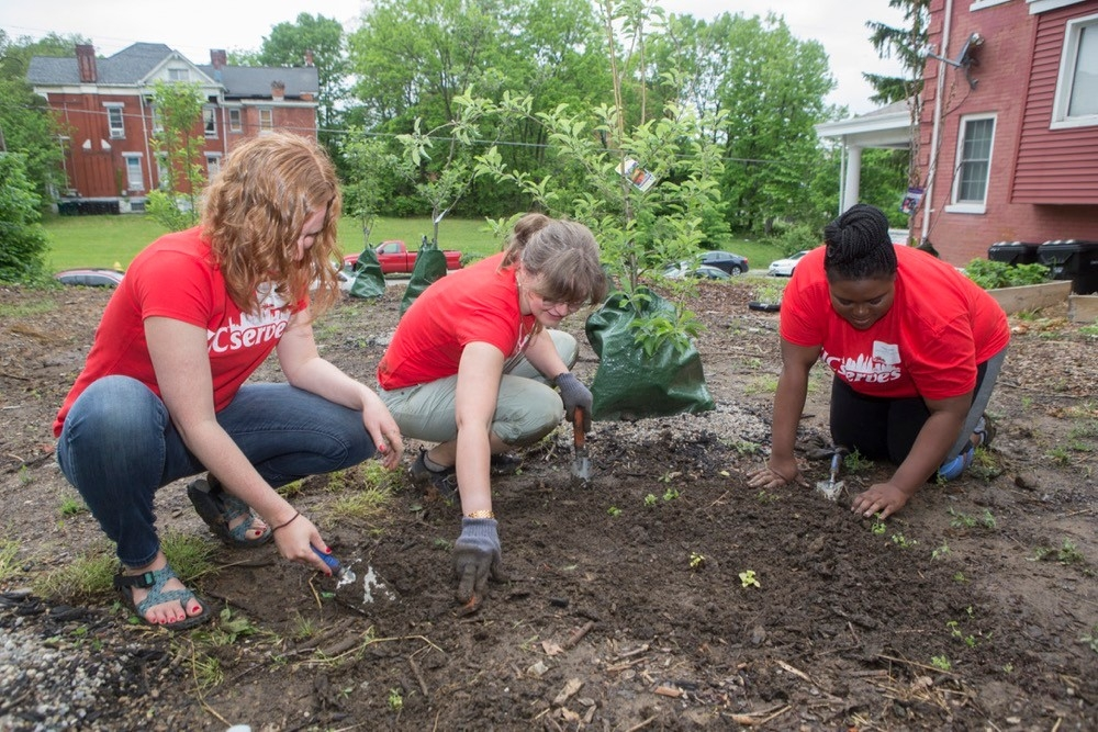 UC Serves volunteers kneel down in the dirt while planting trees at a Cincinnati nature garden on UC Serves Day. photo/Joseph Fuqua II/UC Creative Services