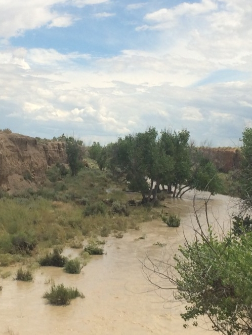 A muddy runoff of water through brush and rock in Chaco Wash, New Mexico.