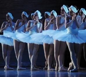 Performance of Swan Lake.