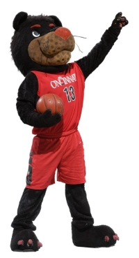 A photo of the University of Cincinnati mascot, the Bearcat.