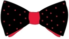 Bowtie design by Evan Cohen, honorable mention.