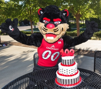 The University of Cincinnati Bearcat mascot celebrates his 100th birthday with a 3-tiered red-black-and-white cake.