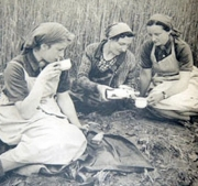 Three girls sittingi next to a field of grain to enjoy some coffee.