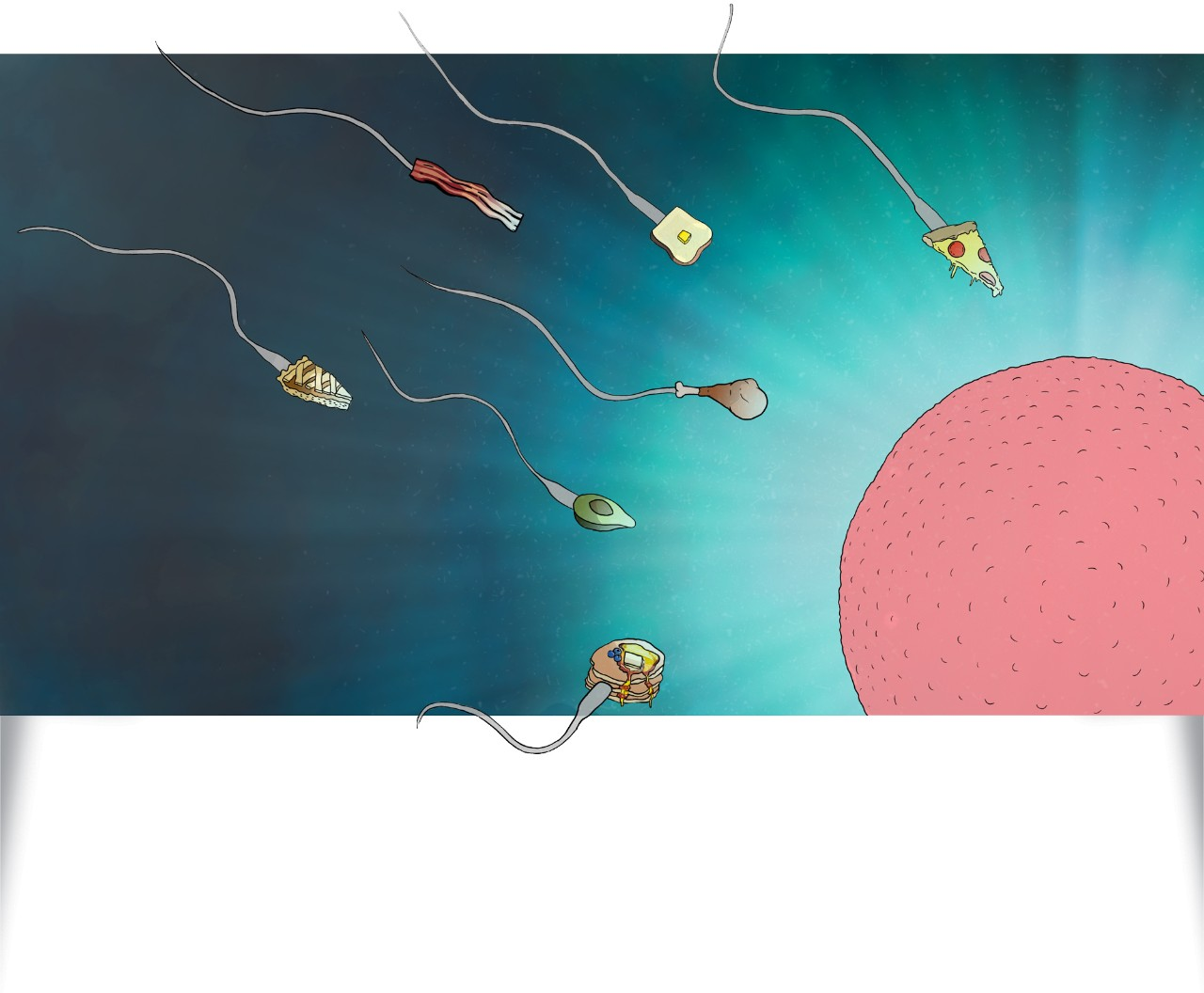 Original artwork shows food items with sperm tales swimming toward an egg