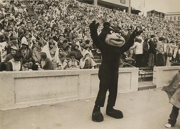 UC bearcat, 1970s