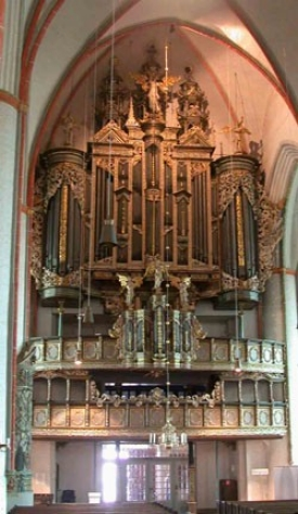 organ_001