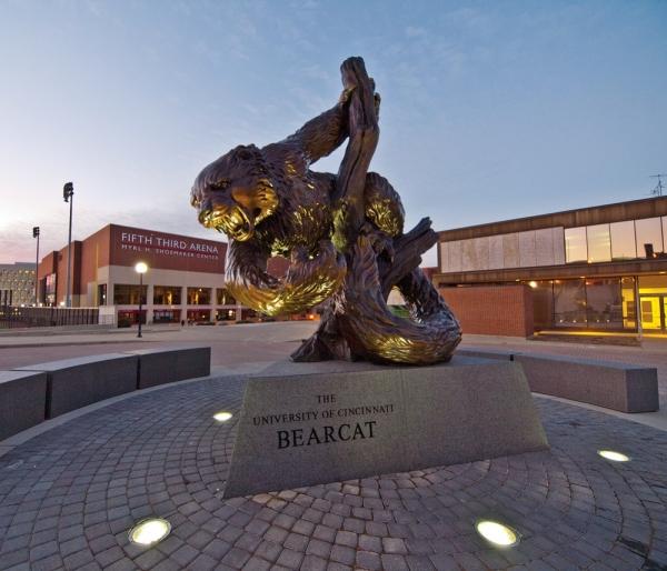 A bronze outdoor statue of the University of Cincinnati's mascot, the Bearcat.