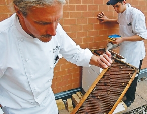 In his chef's coat, Randy Wergers inspects one of the beehives on the rooftop.