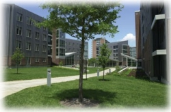 Jefferson Residence Complex is surrounded by green spaces.