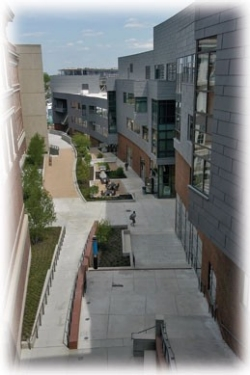 The Mews open space, running between the Steger Student Life Center on the right and the engineering buildings on the left, is an intimate setting for conversation or a relaxing lunch.