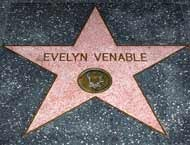 Evelyn Venable's star in the Hollywood Walk of Fame.