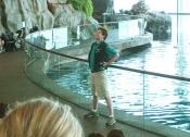 Gavigan at Shedd Aquarium