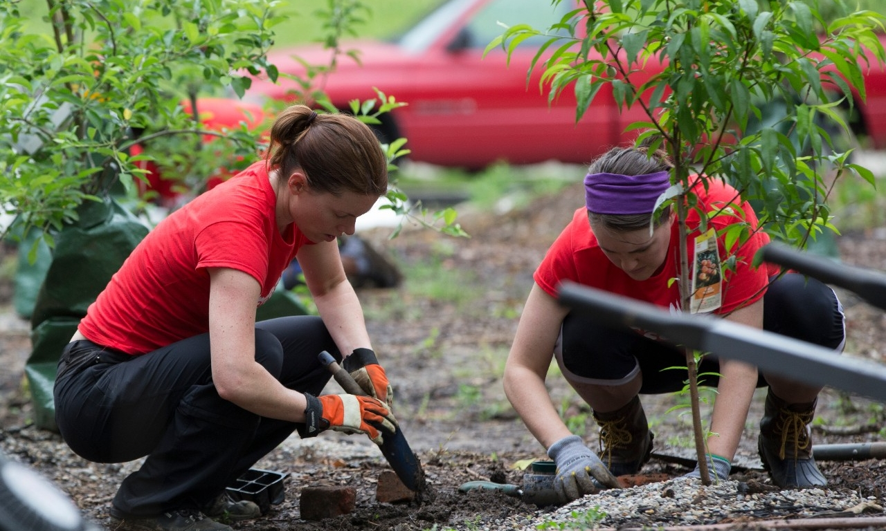 UC employees work in a garden in the community