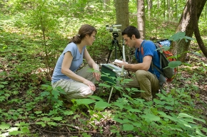 Two UC students crouch in the woods examining high-tech equipment at the UC Center for Field Studies.