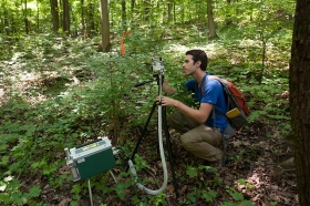 UC Student Eli Williams squats in the woods to view high-tech equipment that measures instantaneous photosynthetic rates of invasive honeysuckle.